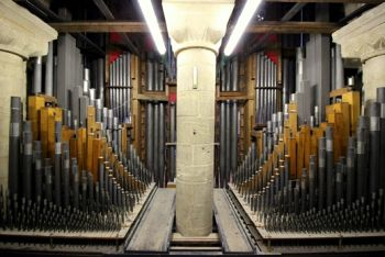 Summer Music Festival: Into the Organ Loft