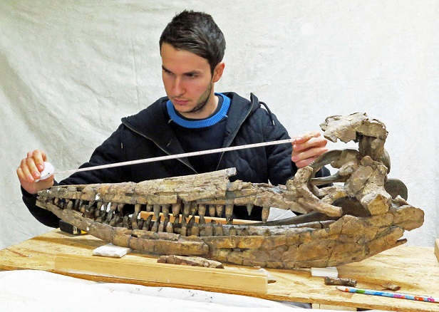 Dinosaurs and Ichthyosaurs of Britain - ASP Christmas Lecture