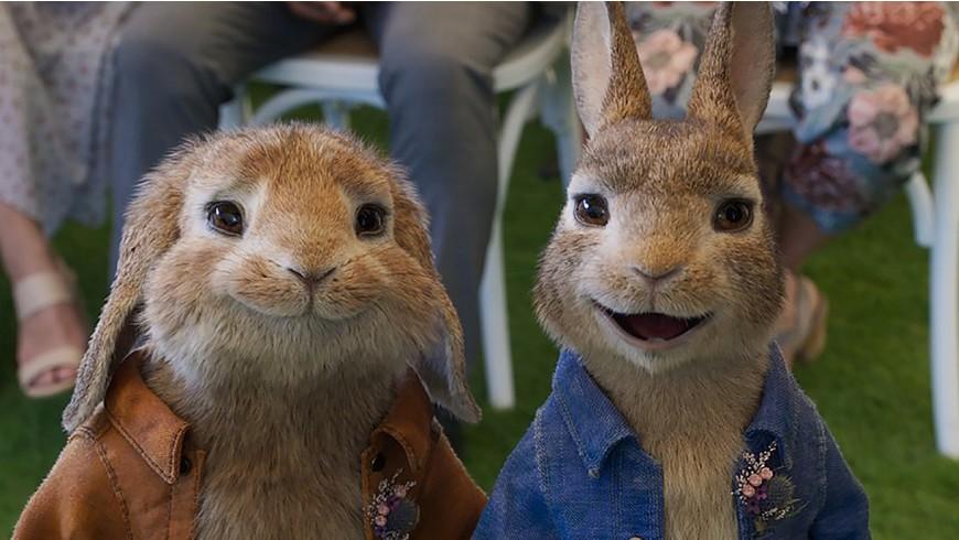 Peter Rabbit 2 – The Runaway