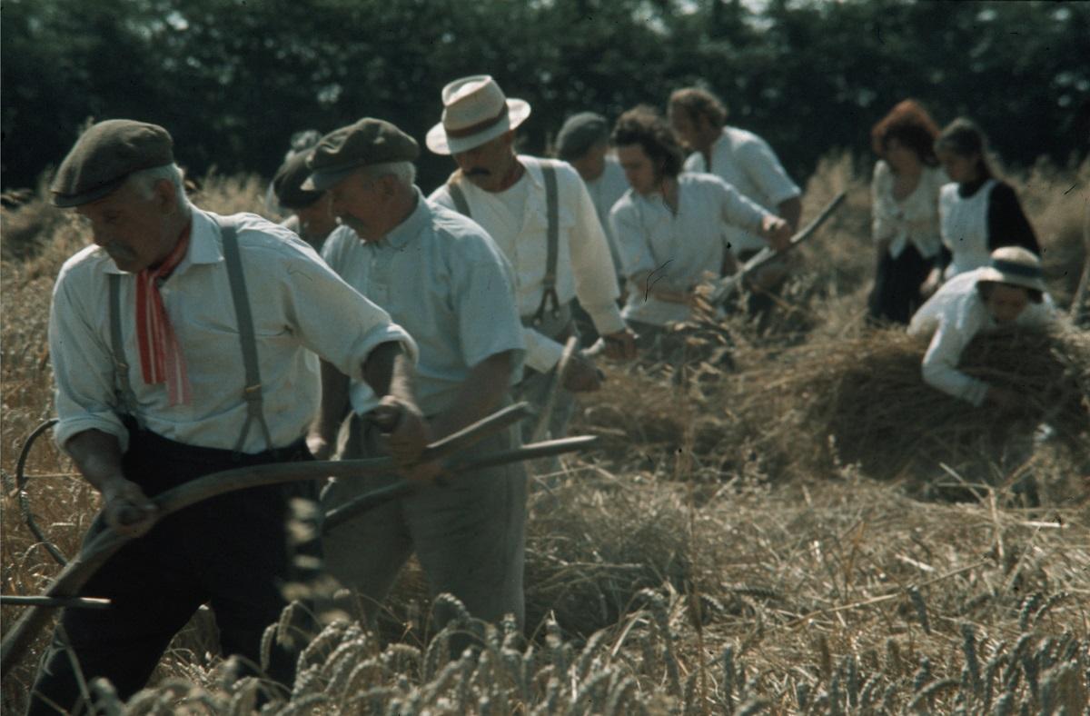 Bury Festival 2017: Requiem For A Village