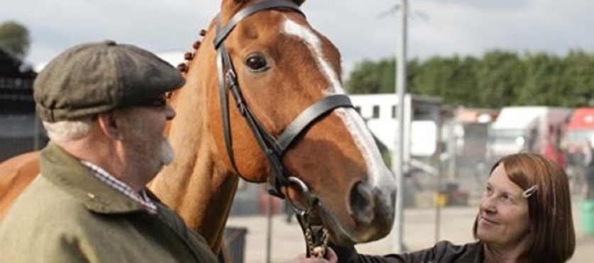 Dark Horse image