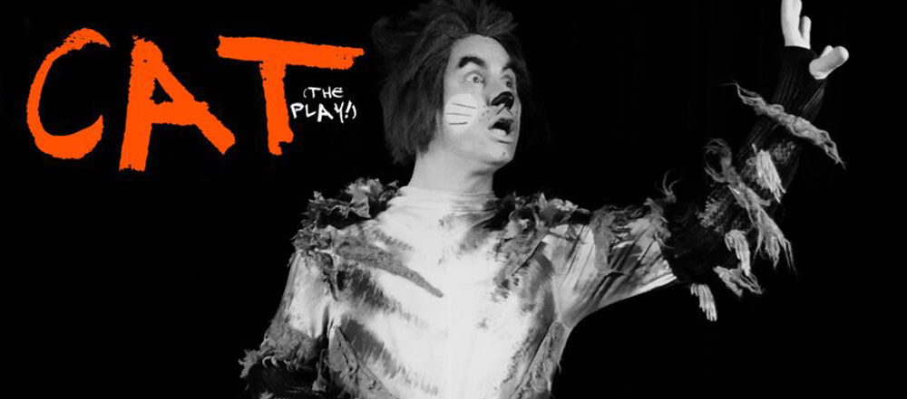 CAT - The Play image