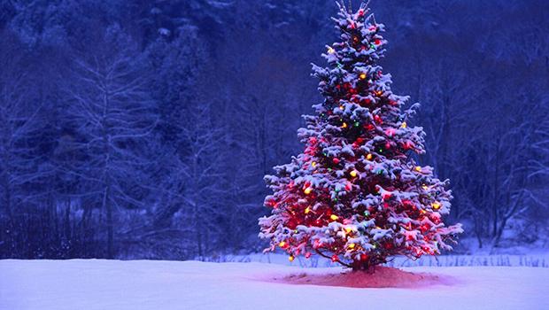 The Astor Family Christmas Show