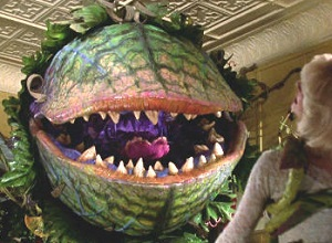 Little Shop of Horrors (PG)