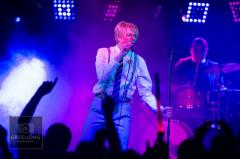 Pop - Up Bowie