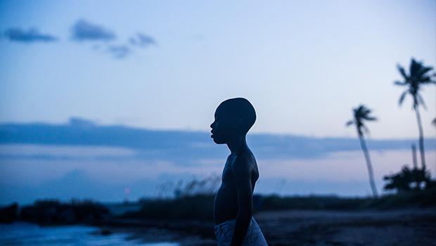 Moonlight - Preview Screening