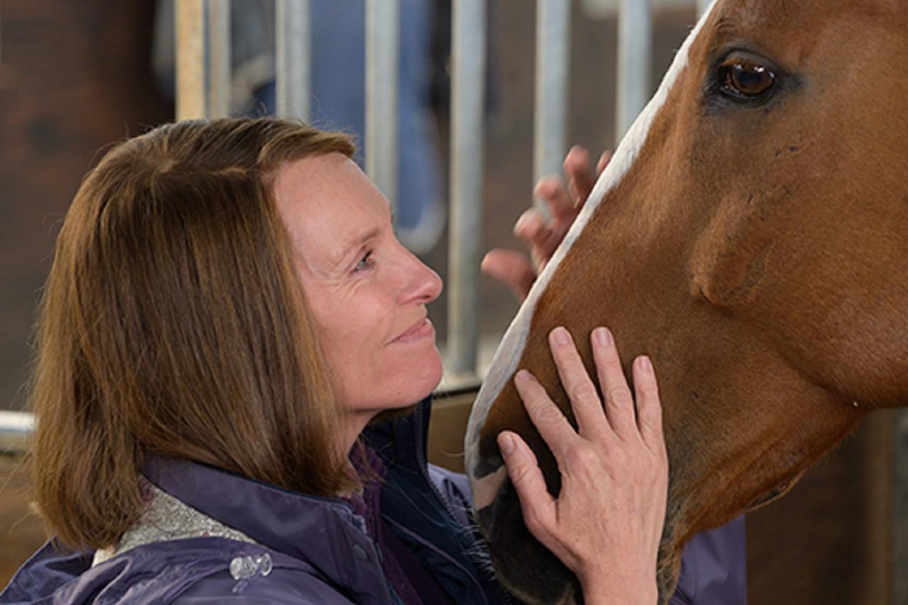Baby & Me: Dream Horse