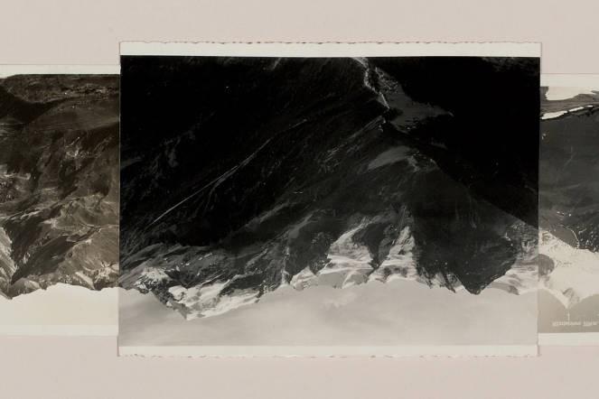 RoH: The Dante Project