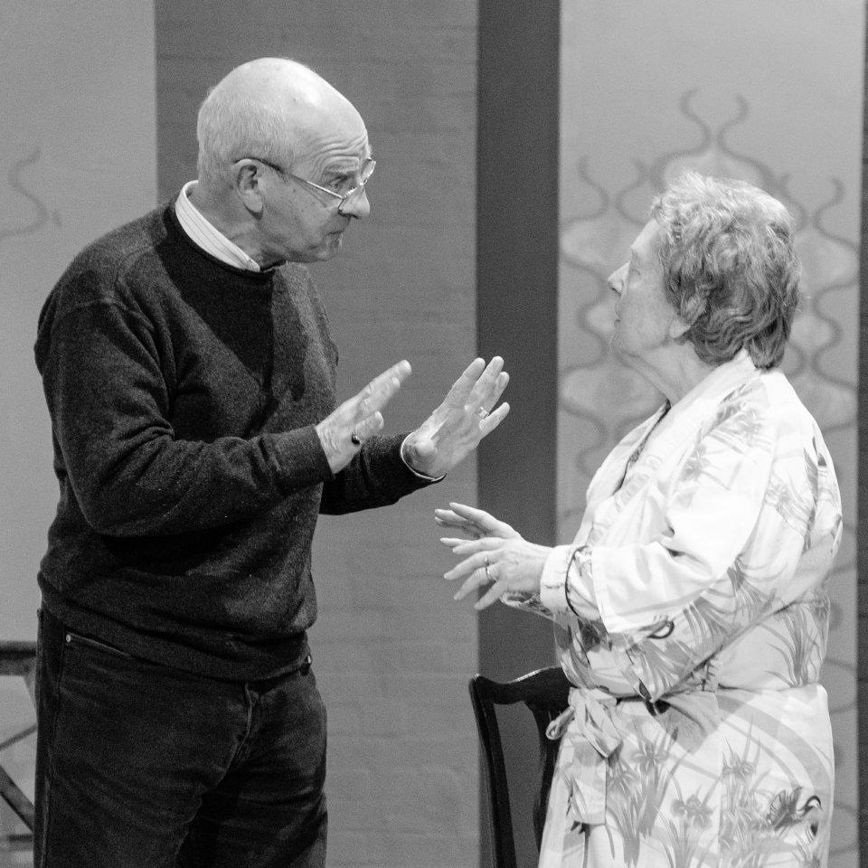 Roger Newman and Hazel Salisbury in Bedroom Farce, 2015