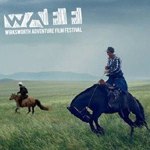 WAFF: All The Wild Horses