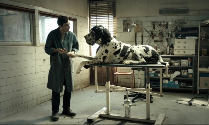 Dogman + intro (S)