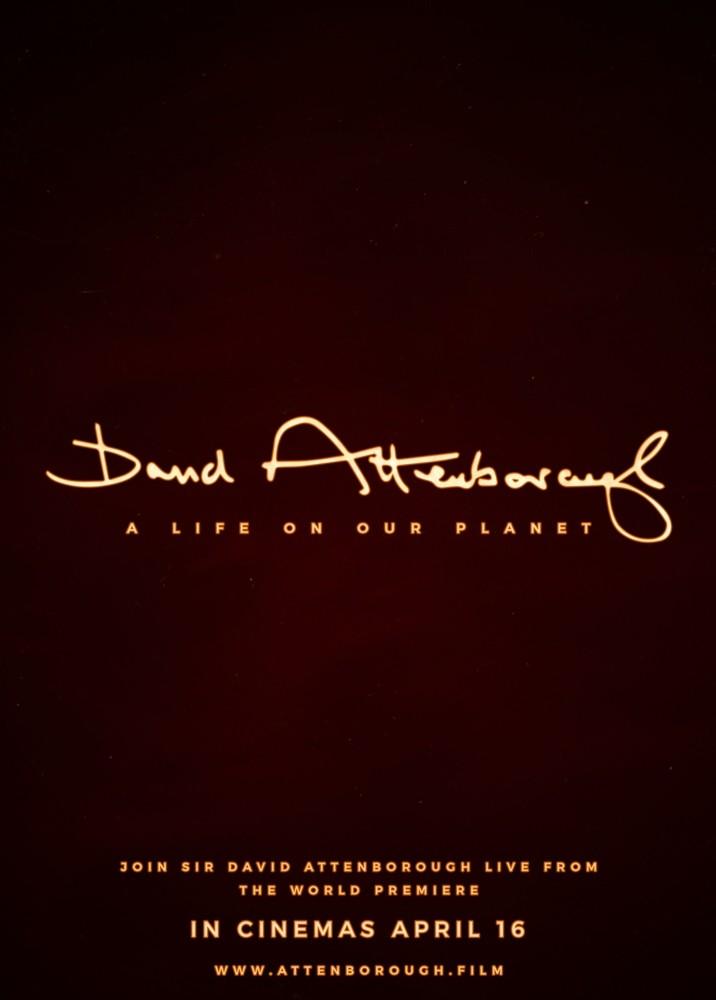 David Attenborough: A Life on Our Planet Plus Q&A Live