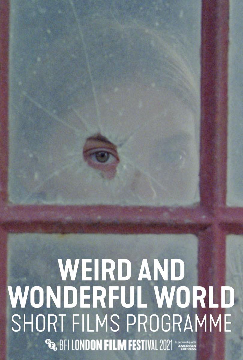 WEIRD & WONDERFUL WORLD [Shorts]