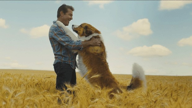 Cineminis: A Dog's Journey
