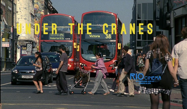 UNDER THE CRANES - SAVE RIDLEY RD + Q&A