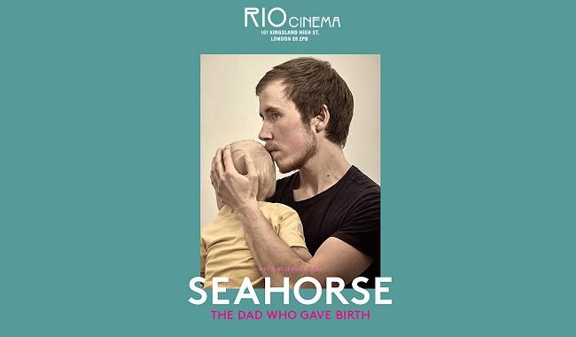 SEAHORSE + Q&A