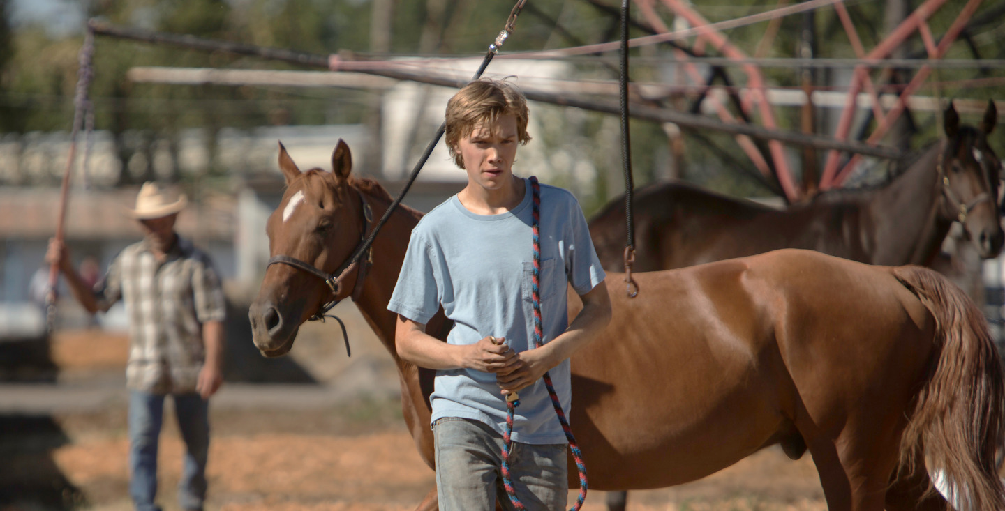 Lean on Pete image