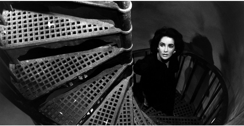 *Film 1: Suddenly, Last Summer  image