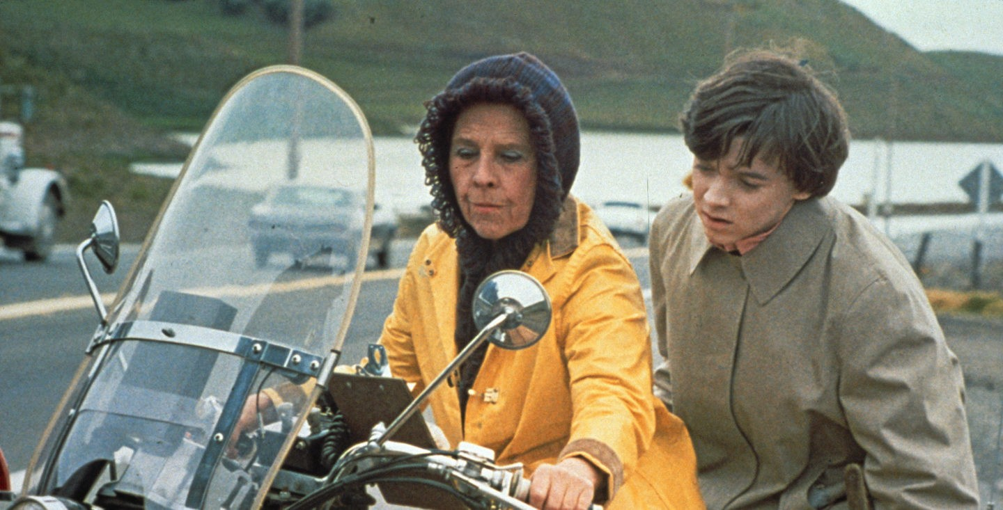 Film 2: Harold and Maude image