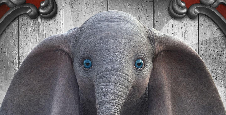 Dumbo (2019) image