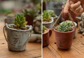 Ancient Pots & Planting